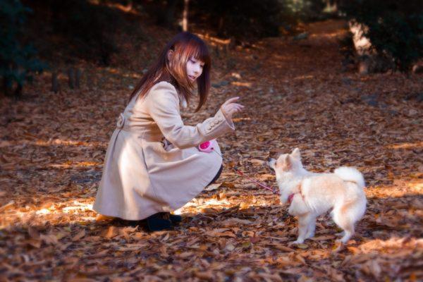 散歩途中の女性と犬 写真