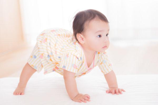 立ち上がろうとする赤ちゃん 写真