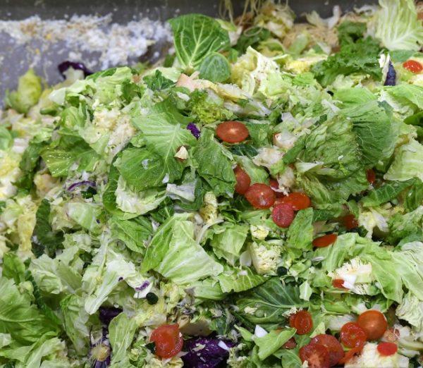 サラダの食べ残し 写真