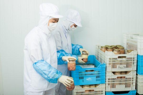 食品工場 写真