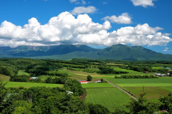 北海道 十勝岳 写真