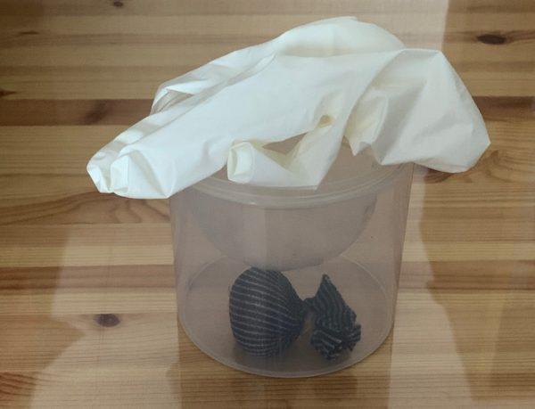 ゼリー&綿棒 空き容器 活用例 写真