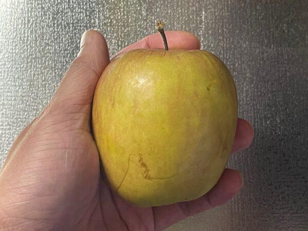 ポッカレモンで作るボケりんご復活ジュース ボケりんご