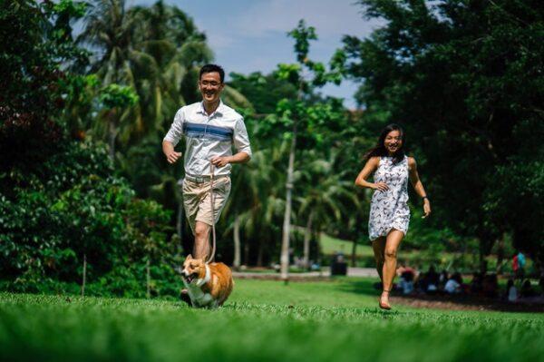 走れ、歩こう! そして走ろう! 写真